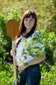 Happy woman planting tree — Стоковое фото