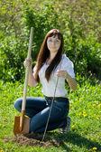 Female gardener planting raspberry — Stock Photo
