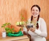 Female gardener with sprouts — Foto de Stock