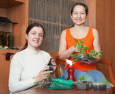 Women with sprouts — Stock Photo