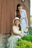 Two women cutting shrubbery — Stock Photo
