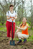 Two women making orchard — Stock Photo