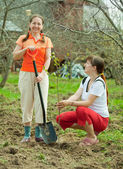 Happy women planting fruit tree — Stock Photo