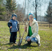 Woman and boy planting tree — Stock Photo