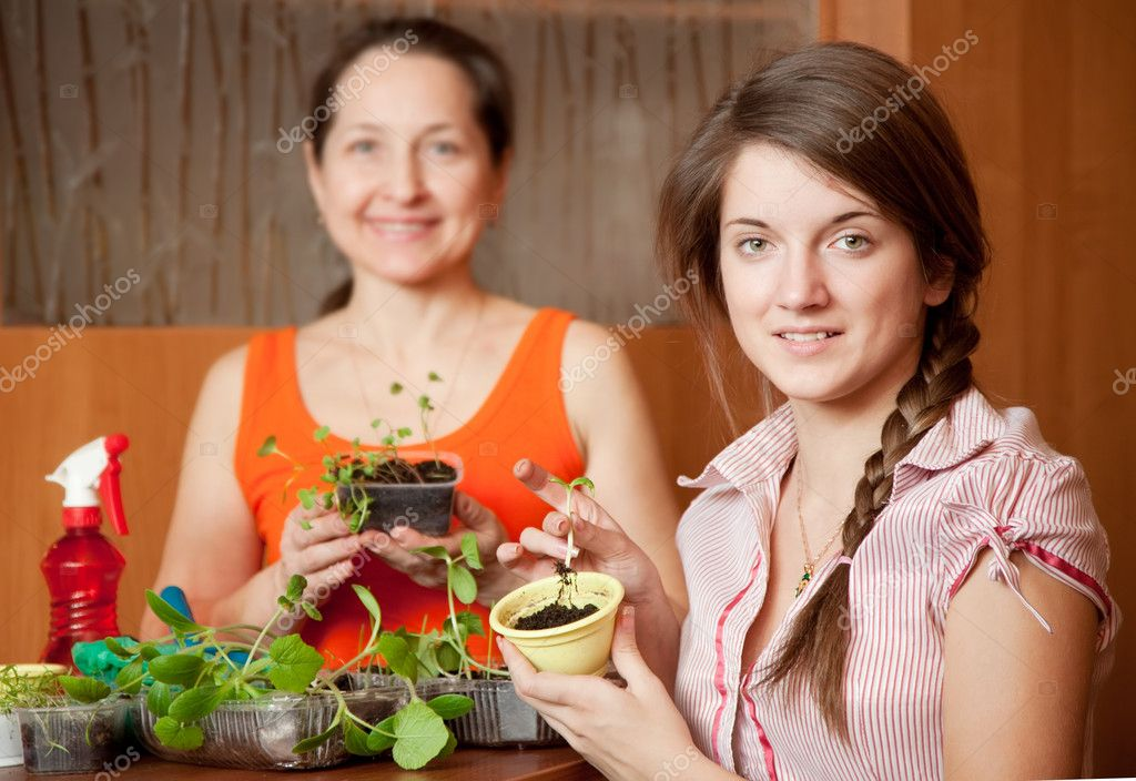 Happy women with various seedlings at home — Stock Photo #9892880