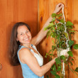 Woman hanging flower on wall — Stockfoto