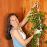 kadın duvarda asılı çiçek — Stok fotoğraf