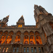 Evening view of town hall in Vienna — Foto Stock