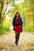 Ragazza in autunno — Foto Stock