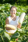 Mulher colhendo vegetais medula — Fotografia Stock