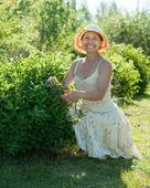 Mature woman cutting shrubbery — Stock Photo