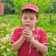 Stock Photo: Boy and dandelion