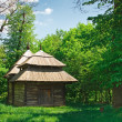 Ukrainian old log hut — Stock Photo