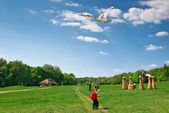 Boy and kite in field — Stock Photo