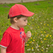 Boy with dandelion — Stock Photo