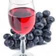 Glass with wine and fruit — Stock Photo