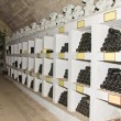 Wine collection in winnery - Stock Photo