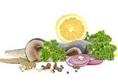 Herring with herbs and lemon — Stock Photo