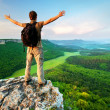 Man on top of mountain - Stock Photo