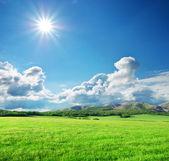 Dağ yeşil çayır — Stok fotoğraf