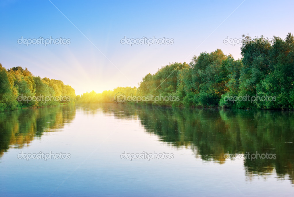 River and spring forest. Nature composition.  Stock Photo #9839449