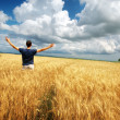 Man in yellow meadow — Stock Photo