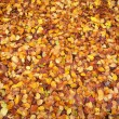 Autumn leaf texture - Stock Photo