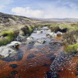 Glenmacnass River — Stock Photo