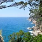 Mediterranean sea foam rocky shore — Stock Photo