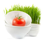 Healthy food - fresh tomato and Germinated Wheat seeds — Stock Photo