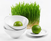 Healthy food - lime and Germinated Wheat seeds — Stock Photo