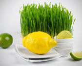 Healthy food - fresh citrus and Germinated Wheat — Stock Photo