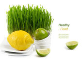 Healthy food - fresh citrus and Germinated Wheat seeds on the wh — Stock Photo