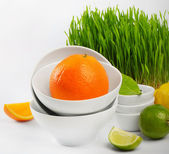 Healthy food - fresh citrus and Germinated Wheat seeds — Stock Photo