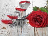 Romantisches abendessen einstellung mit roter rose und blütenblätter — Stockfoto