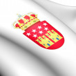 Community of Madrid Coat of Arms, Spain. — Stock Photo
