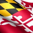 Flag of Maryland, USA. - Stock Photo