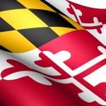 Flag of Maryland, USA. — Stock Photo