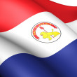 Flag of Paraguay (Reverse) — Stock Photo
