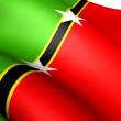 Federation of Saint Kitts and Nevis Flag — Stock Photo
