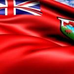Flag of Bermuda — Stock Photo #9370955