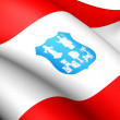 Flag of Asuncion, Paraguay. — Stock Photo