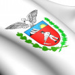 Parana Coat of Arms, Brazil. — Stock Photo #9540240
