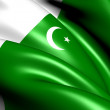 Flag of Pakistan — Stock Photo #9671815