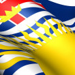 Flag of British Columbia, Canada. — Stock Photo #9821620