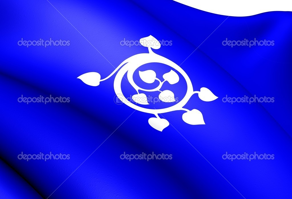 Flag of Luster, Norway. Close Up.  Stock Photo #9919323