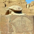 Egypt scarabaeus monument in karnak temple - Stock Photo