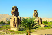 Colossi of memnon in Luxor Egypt — Stock Photo