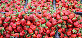 Рeap of fresh ripe strawberries — Stock fotografie