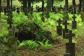 Old Graveyard In Khust, Ukraine — Stock Photo